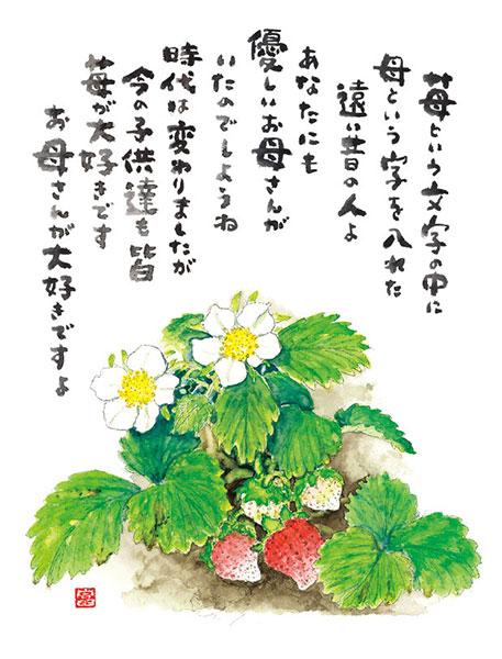 星野富弘の画像 p1_6